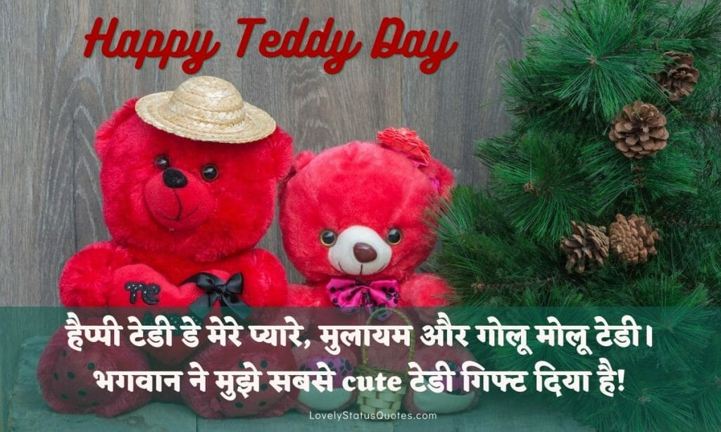 teddy day status in hindi for whatsapp